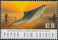 Papua New Guinea 2003 Protected Species - Dolphins e