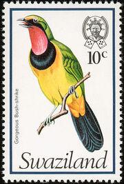 Swaziland 1976 Birds h