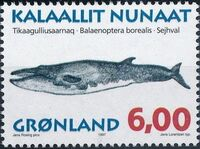 Greenland 1997 Whales c