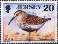 Jersey 1997 Seabirds and waders d