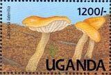 Uganda 1991 Mushrooms of Uganda l