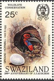 Swaziland 1985 WWF Southern Ground Hornbill (Audubon birth bicentenary) d