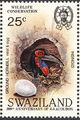 Swaziland 1985 WWF Southern Ground Hornbill (Audubon birth bicentenary) d.jpg