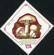 Mongolia 1964 Mushrooms c