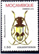 Mozambique 1978 Coleoptera from Mozambique c