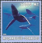 Mozambique 2002 The World of the Sea - Whales 2 a