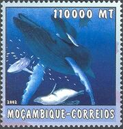 Mozambique 2002 The World of the Sea - Whales 2 g