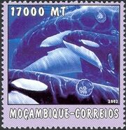 Mozambique 2002 The World of the Sea - Whales 1 b