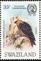 Swaziland 1983 WWF Bearded Vulture d.jpg
