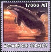 Mozambique 2002 The World of the Sea - Whales 1 f