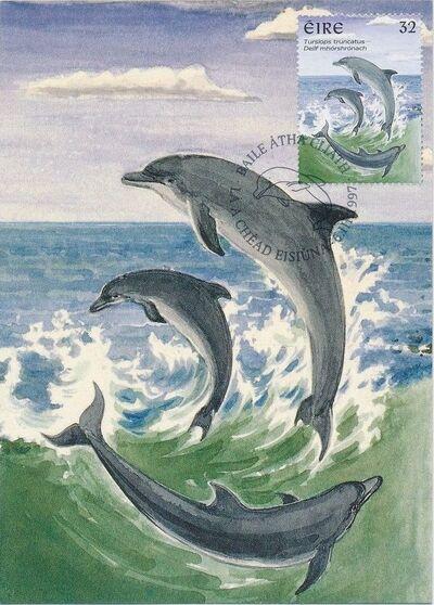 Ireland 1997 Marine Mammals MCc