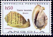 Angola 1974 Sea Shells f