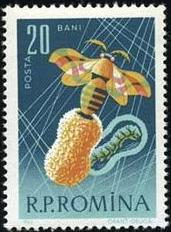 Romania 1963 Bees & Silk Worms b