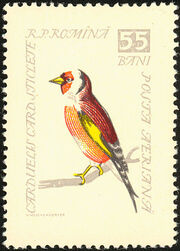 Romania 1959 Birds g