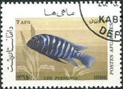 Afghanistan 1986 Fishes b