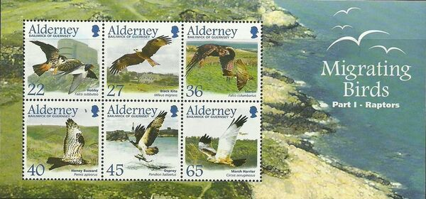Alderney 2002 Migrating Birds Part 1 Raptors g