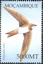 Mozambique 2002 Birds of Africa b