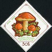 Mongolia 1964 Mushrooms e