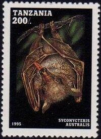 Tanzania 1995 Bats e