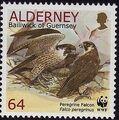 Alderney 2000 WWF Peregrine Falcon f.jpg