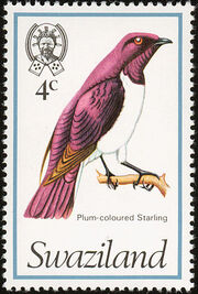 Swaziland 1976 Birds d