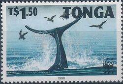 Tonga 1996 WWF Humpback Whale c