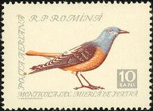 Romania 1959 Birds a