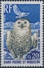 St Pierre et Miquelon 1973 Birds c
