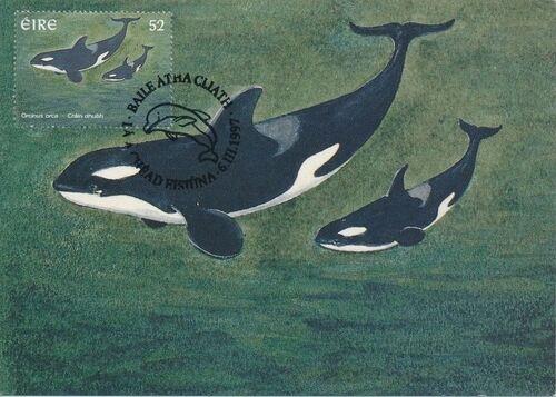 Ireland 1997 Marine Mammals MCd