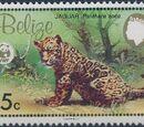 Belize 1983 WWF - Jaguar