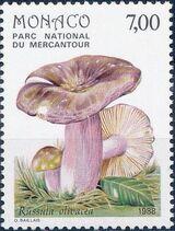 Monaco 1988 Fungi in Mercantour National Park e
