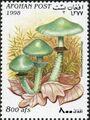 Afghanistan 1998 Mushrooms c.jpg