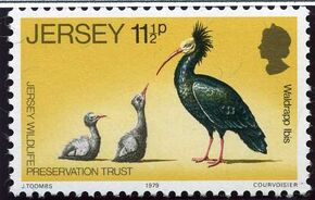 Jersey 1979 Jersey Wildlife Preservation Trust c
