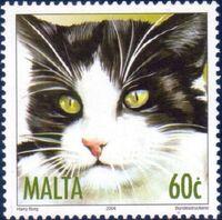 Malta 2004 Cats e