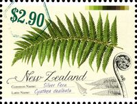 New Zealand 2013 New Zealand Native Ferns e