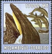 Mozambique 2002 The World of the Sea - Whales 2 f