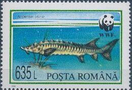 Romania 1994 WWF Sturgeons d