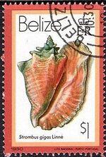 Belize 1980 Shells and Sea Snails n