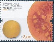 Madeira 2009 Frutos Tropical and Subtropical Fruits from Madeira d