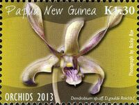 Papua New Guinea 2013 Orchids f