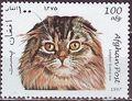 Afghanistan 1997 Cats c.jpg