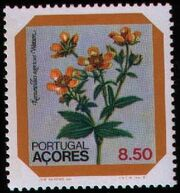 Azores 1981 Azores Flowers (1st Issue) b