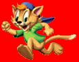 Casey cat img2