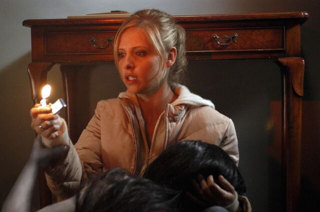 File:Still-of-sarah-michelle-gellar-in-the-grudge-(2004)-large-picture.jpg