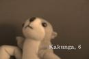 Kakunga