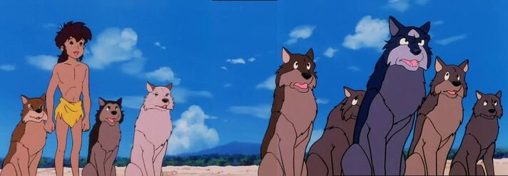 Mowgli and the Pack Gathered Around to Hear Vermillion