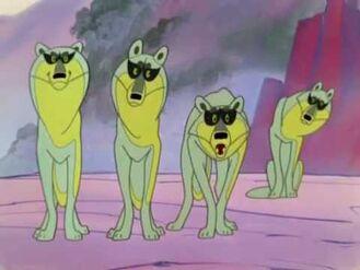 Wolf Judges