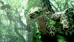Junglebook clip kaa