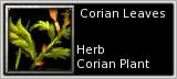 Corian petal quick short