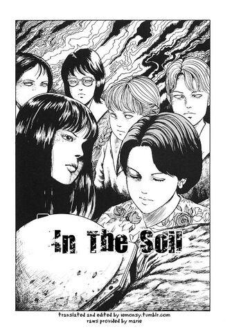 File:In the soil.jpg